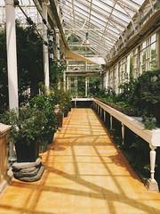 changgyeonggung (Kat.Anna) Tags: palace greenhouse seoul iphoneography vscocam