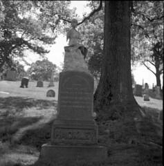 20150525010 (triebensee) Tags: blackandwhite film monochrome cemetery brooklyn zeiss memorial day greenwood 11 d76 hasselblad carl f28 planar 80mm 500cm selfdeveloped 2015 fujineopanacros100 fujifilmneopanacros100 brooklynian