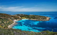 Fifthy shades of blue (Tati@) Tags: blu natura asinara macchiamediterranea areamarinaprotetta