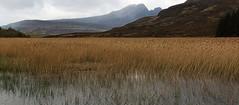 Bla Bheinn from Loch Cill Chriosd (Gtarman1401) Tags: mountains skye reeds landscape loch cuillins