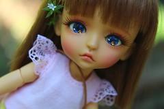 Franka (Gigiholy) Tags: yellow wig lea nutcracker lati formydoll oscardolleyes