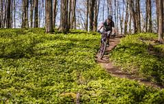 3 Stage (jeffgauld) Tags: ontario bike bicycle collingwood outdoor mountainbike biking bluemountain 3stage