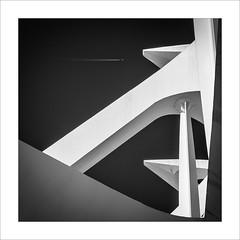 Escena amb avi /Scene with aircraft (ximo rosell) Tags: blackandwhite bw blancoynegro valencia nikon squares aircraft bn calatrava d750 ciudaddelasciencias detall composici ximorosell