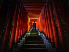 Sacred Ground (marco ferrarin) Tags: japan tokyo shrine religion   shinto torii  sanctuary akasaka hieshrine  shintoism sacredground   sannouinarishrine