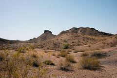 5R6K2902 (ATeshima) Tags: arizona nature havasu