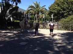 Jessica_Emmerich_Horsemanship_Andalusien_28 (jessica_emmerich) Tags: hotel natural jessica hurricane second andalusien spanien tarifa kurs horsemanship emmerich hippica
