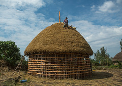 Man covers the thatched roof of a traditional ethiopian house, Kembata, Alaba kuito, Ethiopia (Eric Lafforgue) Tags: africa wood roof sky people house color home horizontal architecture outdoors photography wooden construction village adult african traditional culture straw progress hut thatch typical ethiopia thatched hornofafrica developing ethiopian riftvalley eastafrica thiopien etiopia abyssinia ethiopie etiopa ruralscene unrecognizable buildingexterior fulllenght onemanonly  etiopija 1people ethiopi alaba  toukoul etiopien etipia halaba  etiyopya  unrecognizableperson    kembata      alabakuito ethio163355