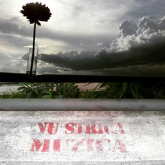Nu strica muzica! #Bucuresti #Bucharest (Cristian tefnescu) Tags: sky flower square graffiti diptych smartphone squareformat ludwig bucharest bucuresti cer muzica floare instagram instagramapp uploaded:by=instagram