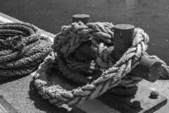 Rope (Stuart.67) Tags: sea texture mono blackwhite nikon harbour rope tied paignton coiled d800