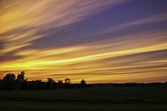 The Violet Wedge (Matt Molloy) Tags: trees sunset sky ontario canada motion nature field grass lines clouds landscape photography timelapse movement country violet colourful streaks lovelife photostack mattmolloy timestack