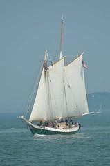 S/V Liberty Clipper (jelpics) Tags: ocean sea boston sailboat port harbor boat ship massachusetts sail mast bostonma rigging clipper bostonharbor libertyclipper sailingvessel svlibertyclipper