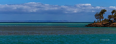 SEA FRONT_GOUNA_RED SEA. (Tarek Raafat) Tags: trees seascape clouds phase1 elgouna