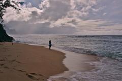 DSC05119 (deerhake.11) Tags: hideawaysbeach kauai lauradelorenzo