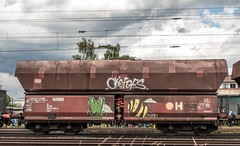 0552_2016_06_18_Koblenz_Lützel_Graffiti_DB_Falns (ruhrpott.sprinter) Tags: railroad ice train germany logo deutschland bonn diesel outdoor natur eisenbahn rail zug blumen köln sandwich db cargo 101 nrw passenger fret rhein gelsenkirchen ruhrgebiet freight e14 locomotives cfl limburg mosel 139 185 151 152 rheinlandpfalz lokomotive 145 482 vias sprinter ruhrpott 294 e19 648 643 güter 0428 tdr 0037 dispo prellbock 6139 6185 mrce akiem reisezug 0460 dispolok 4482 sbbc rb23 ellok koblenzlützel es64f4 transregio vtgd