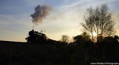 43106 (Lewis Maddox) Tags: park sunset train golden pig jubilee railway goods steam severn valley worcestershire 50th freight foley glint svr ivatt photocharter 200415