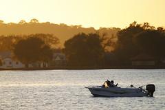 boat australia victoria viewpoint ballarat lakewendouree