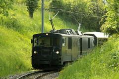 Lokomotive GDe 4/4 6002 mit Taufname Rossinire ( Baujahr 1983 ) und der Aufschrift Isabelle von Siebenthal der Montreux - Berner Oberland - Bahn MOB  bei Chamby im Kanton Waadt - Vaud der Schweiz (chrchr_75) Tags: chriguhurnibluemailch christoph hurni schweiz suisse switzerland svizzera suissa swiss chrchr chrchr75 chrigu chriguhurni mai 2015 albumzzz201505mai bahn eisenbahn schweizer bahnen train treno zug albumbahnenderschweiz albumbahnenderschweiz201516 albummobmontreuxberneroberlandbahn mob schmalspurbahn juna zoug trainen tog tren  lokomotive  locomotora lok lokomotiv locomotief locomotiva locomotive railway rautatie chemin de fer ferrovia  spoorweg  centralstation ferroviaria
