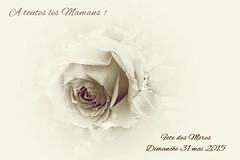 Fête des Mères 2015 (mamietherese1) Tags: autofocus romanceintheair memoriesbook world100f phvalue itsallaboutflowers netartii