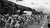 sweat (photojaco) Tags: bw monocromo tour bici giro versilia corsa domenica bicicletta passione gara fortedeimarmi ruote sudore