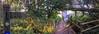 2014-09-30 at 17.25.12 (AppleTV.1488) Tags: 2014 30sep2014 30092014 adobephotoshoplightroom571macintosh appletv1488 chiseldontimberlandtrail cyclepath dayone england europe flickr gb gbr greatbritain lightroom metadata onedrive september swindon uk unitedkingdom wiltshire iphone iphone5s iphone5sbackcamera415mmf22 iphoneography chiseldontimberlandtrain focallength35mm pm unknownflash landscapeaspectratio