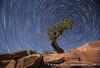 Canyonlands NP Star Trail (brngckn) Tags: night utah revolution canyonlands rotation startrail