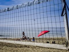 Playing on the beach (Maureen_Kovacs) Tags: blue waves newportbeach hibiscus