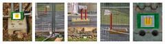 Making of a Postcard at a Construction Site Ansichtskarte Baustelle Otto Wagner Spital am Steinhof Spiegel Grund Mirror Ground Pavillon Severin - mail art (hedbavny) Tags: vienna wien park red orange white black green rot face grass yellow stone fence painting paper grid austria design sterreich spring gesicht drawing postcard pipe wiese baustelle unterwegs gelb letter gras ausflug grn mailart brief rohr constructionsite papier stein garten buildingsite absperrung bau schwarz malen gitter abstrakt frhling spaziergang postkarte rundgang baumgarten hausbau konkret penzing weis ansichtskarte runde steinhofgrnde htteldorf steinhof 1140 belftung maigrn korrespondenz millimeterpapier ottowagnerspital grasgrn spiegelgrund wohltemperiert baustellengitter hedbavny ingridhedbavny korrespondenzkunst