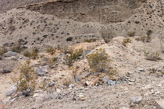 Tailings (Underground Explorers) Tags: california abandoned underground mine valley explorers exploration panamint