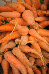 carrots (Sam Scholes) Tags: maket market bedugul travel carrots for sale colorful vacation indonesia shopping bali forsale baturiti id