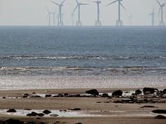 The wind farm off Walney (billnbenj) Tags: cumbria lowtide turbine barrow windturbine windfarm irishsea walney