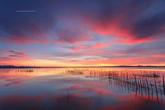 La Albufera Natural Park ,Valencia,Spain (Pepelahuerta) Tags: paisajes raw lagos cielos atardeceres reflejos redes cañas dng leefilters canon5dmarkii pepelahuerta canon1740ef laalbuferalakers