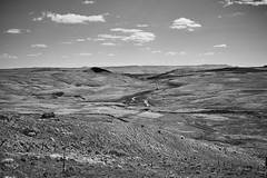 The descent from Ben Vorlich (Hey hey JBA) Tags: uk blackandwhite bw monochrome landscape 50mm scotland blackwhite d750 trossachs callander uplands captureone