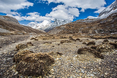 Land Of Yading (Hafiz Anwar) Tags: china park travel wild summer sky cloud mountain snow cold nature grass season landscape scenery rocks hiking extreme reserve windy adventure trail national land daocheng sichuan yading