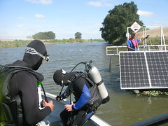 Diving in the Delta