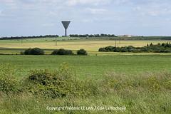 Les paysages de l'Agglomration rochelaise (Agglo La Rochelle) Tags: nature larochelle paysage agglomration