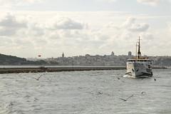 Boazn incisi (sekerciozkan) Tags: city sea bird ferry turkey trkiye istanbul deniz vapur metropol boaz bulut gkyz ku mart bosphoros ehir konstantinopolis