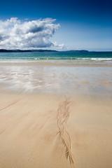 Oldshoremore Beach (2) (Teuchter Prof) Tags: oldshoremore oldshoremorebeach kinlochbervie sand sandybeach sandpatterns wetsand clouds skyscape westcoast northwestcoast sutherland scotland