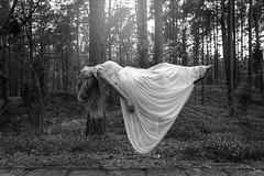 They got me (peqit) Tags: levitate black white monochrome abstract edit dress forest wood tree