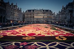 The Flower Carpet (Gilderic Photography) Tags: grandplace bruxelles brussels brussel belgium belgique belgie flowers fleur architecture square tapisdefleurs flowercarpet canon 500d gilderic