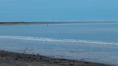 doradillo - puerto madryn (Sofia Moyano) Tags: puerto madryn chubut paisaje mar playa ocano