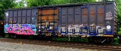 orfn -- nekst (timetomakethepasta) Tags: orfn nekst a2m dts mayhem vizie freight train graffiti boxcar art csx csxt