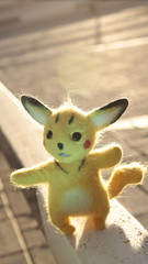 Fluffy pikachu, playing with the sun rays (Mafin Arts) Tags: pikachu handmade felted toy gift sunset sunshine sunray ray pokemon fluffy urban outdoor roof canon100d canon mafinarts