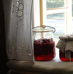 A jar full of goodies (Aga Dzicio) Tags: raspberries raspberry preserves jam marmelade jar jars window folk biaystok muzeumwsi folkmuseum tradition tradycja hungry