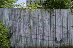 centerville, tn fence art (Nashville Street Photography) Tags: color ricohgrd ricohgrdcolor colorphotographer photogallery fenceart pinkcadillac