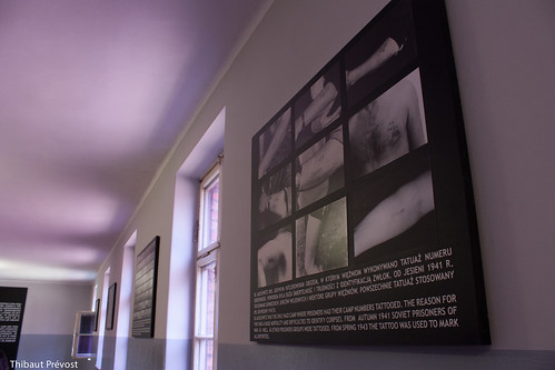 Exposition du musée (camp 1)