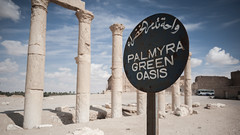 Palmyra (Cees Willems) Tags: world sun rome color colour heritage stone 35mm is sand ancient ruins war desert roman islam pillar ruin burn arabia syria government isis palmyra islamic pagan syrien syrie d700 ceeswillems tadmud