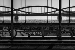 Lines and curves / Man made cycles (zgr Grgey) Tags: bridge lines 50mm nikon curves hamburg railway d750 cycles 2016