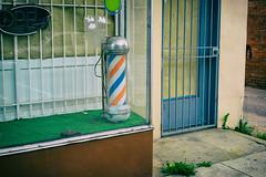 Barbershop Bird (MikeSpeaks) Tags: bird dead closed barbershop barber carrion