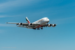 Emirates, A380-800 (Bob from Caledon) Tags: aircraft airplanes aeroplanes arrivals emiratesairlines runway23 a380800 cyyz torontointernationalpearsonairport a6eoh