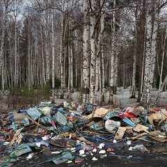 (Anton Novoselov) Tags: 120 6x6 tlr film nature trash rolleiflex forest square garbage russia outdoor medium format 35 dumped e2  xenotar